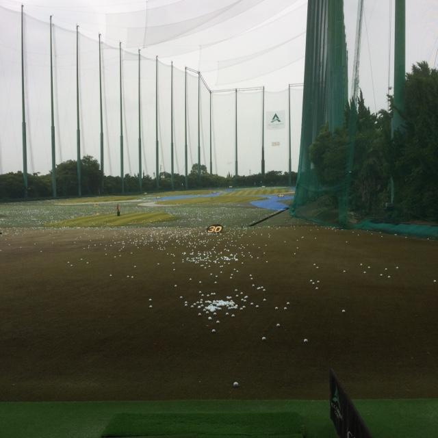golfjunh.JPG