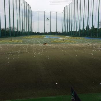 golfapre.JPG