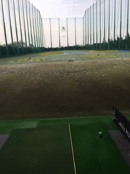 golfapro.JPG