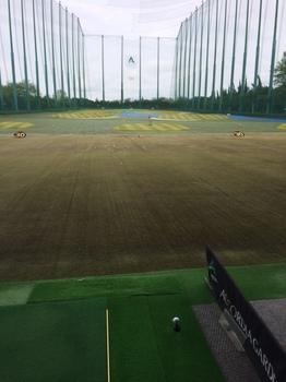 golfaprq.JPG