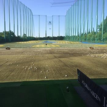 golfjunb.JPG