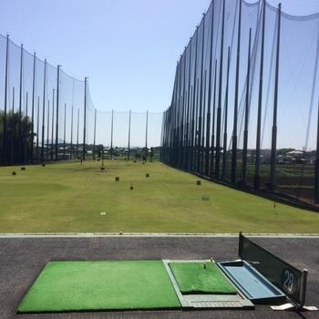 golfjunc.JPG