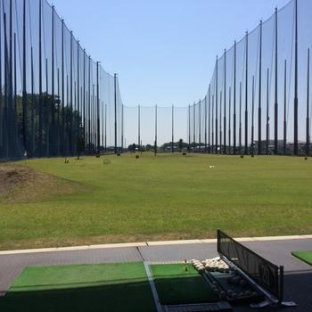 golfjunj.JPG