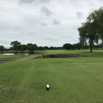 golfjuns.JPG