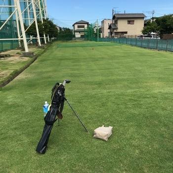 golfjunu.JPG