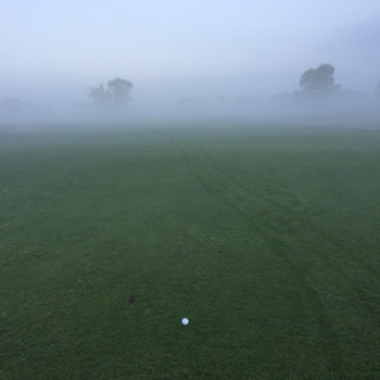 golfmayb.JPG