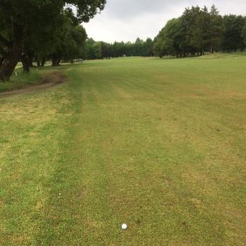 golfmayh.JPG